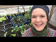 Live stream from my polytunnel. What I am growing in my polytunnel during spring. Spring Is Here, Kids Playing, Countryside, Day, Plants, Life, Beautiful, Plant