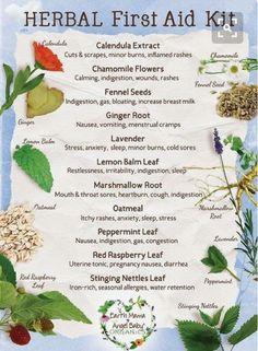 Herbs purposes