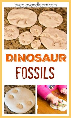Dinosaur fossil activity for kids. Fun dinosaur activity and craft for toddlers. Educational, learn about science and have fun!