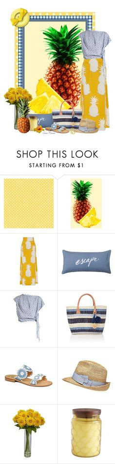 """""""Gingham and Pineapples"""" by anamaria-93 ❤ liked on Polyvore featuring CO, Osklen, Vivienne Westwood Anglomania, Barneys New York, Jack Rogers, Witchery and Pier 1 Imports"""