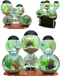 Awesome aquariums: 4 cool modern fish tank designs - Yahoo Homes