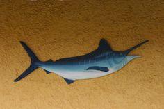 Espada está na lista de peixes mais procurados para aquário | Portal Animal - o canal de pets do Estadão