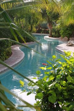 Beautiful pool design.