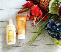Weleda Shampoo & Conditioner!! – TheShazWorld