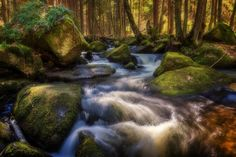 -- Spring Paradise -- - Contact: petrkubat@seznam.cz www.facebook.com/fotopetrkubat Waterfall, Paradise, Facebook, Spring, Outdoor, Outdoors, Outdoor Living, Garden, Waterfalls