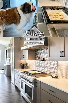 "48"" wide Stainless Steel KitchenAid range with two electric ovens and 6 burner gas cooktop with griddle.  Shop #appliances at villagehomestores.com Electric Oven, Shades Blinds, At Home Store, Kitchenaid, Ovens, Countertops, Appliances, Range, Stainless Steel"