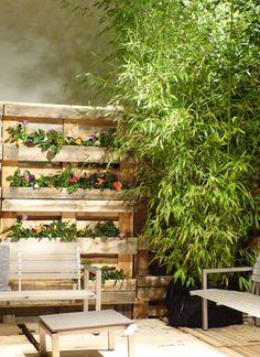 Großartig Sichtschutz aus Paletten | Garten | Pinterest | Gardens, Garten  BI64