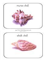 printable sea shells