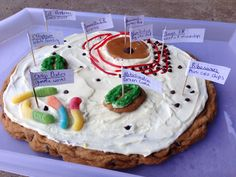 Animal Cell cookie