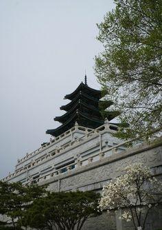 Gyeongbokgung #Gyeongbokgung Palace in Spring, Seoul, Korea. Built in 1395, under the Joseon dynasty.