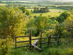 Elizabeth Debenham: Aldbury Nowers. 2nd Place, Breathing Spaces (sponsored by the National Trust).