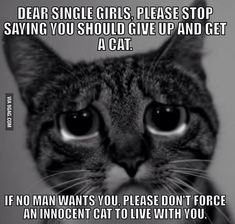To all the single ladies.