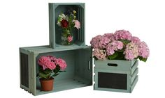 This nest features 3 crates of different sizes that are ideal for flowers, fruit, CD's, garden tools and other; complete with chalkboard end