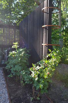 Outdoor Plants, Outdoor Gardens, Plank, Garden Inspiration, Fence, Outdoor Living, Blogg, Yard, Outdoor Structures