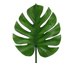 What fun that decoration branches of HK Living! So you always have green in your home and you can also just really forgot to water the plants. Decoration Branches, Branch Decor, Motif Tropical, Leaf Template, Flower Template, Snake Plant, Leaf Art, Paper Flowers, Paper Leaves