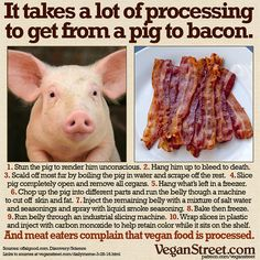 """But vegan food is so processed!"" Compared to what? Meat?…"