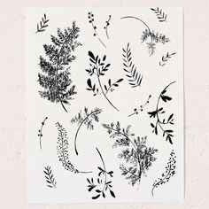 Shannon Kirsten Ferns Art Print - Urban Outfitters