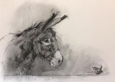 Welcome to the website of artist Nicky Litchfield. Delightful paintings and prints of British wildlife and farm animals. Based in the Ribble Valley, Lancs UK Donkey Drawing, Miniature Donkey, Soft Pastel Art, British Wildlife, Animal Paintings, Canvas Paintings, Painting Inspiration, Sketches, Art Prints
