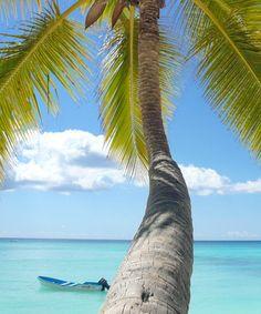 Karibik und Südsee
