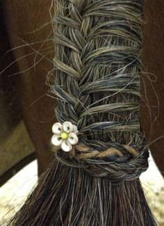 I used to braid my horses manes and tails. I'd put ribbons in the mare's and the straw/bale strings on the geldings - and feathers in both. I think I loved grooming my horses as much as I loved riding them. I even enjoyed mucking out their stables and putting fresh sawdust down for them to sleep on... nothing smells better than a clean barn and stable ;-)