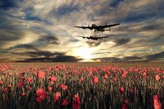 steel canvas Other avro lancaster bomber lancasters bombers poppy poppies field remembrance tribute canadian cwhm bbmf Poppy Field Remembrance, Remembrance Day Art, Ww2 Aircraft, Military Aircraft, All Poster, Poster Prints, Ww1 Art, Lancaster Bomber, Flanders Field