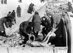 Bergen Belsen, Germany, SS women taking corpses to a mass grave, after the liberation of the camp, April 1945.
