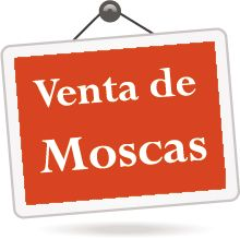 Venta-de-mosca Fly Tying, Fly Fishing, Fly Fishing Flies, Fishing Lures, Angler Fish, Nymphs, Musica, Camping Tips