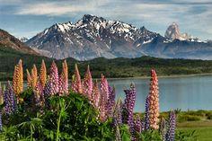 Postcard Perfect: Beautiful Patagonia