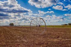 16 x 20 Farm Wheel Print