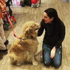 Sharing a moment with a sweet #goldenretriever #dogsofnewyork #dogsofinstagram #mewithyourdog #firstpost #dogsofnyc #handsomedog