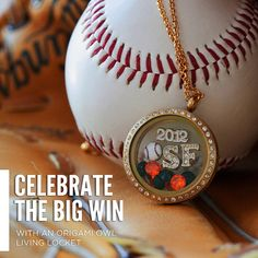 "Do you have someone special who loves sports? You can make them a super special locket for their favorite team!    Coming 11/01/12..... A Cardinal Charm and a new line called ""Simply Stated""! Call me or visit http://susanb.origamiowl.com/      Would you like to host a party and earn jewelry for the holidays?     Would you like to join my team and find how much fun Origami Owl is?"