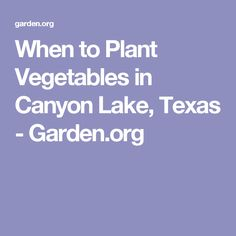When fruits vegetables are in season - Jolene's Gardening When To Plant Vegetables, Fall Vegetables, Planting Vegetables, Growing Vegetables, Veggies, Vegetable Planting Calendar, Vegetable Garden, Texas Gardening, Organic Gardening
