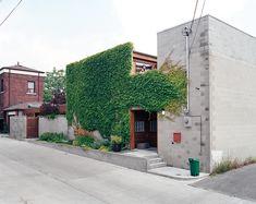 A narrow garden and climbing ivy soften and brighten the house's blank front facade.