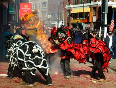 lion dance boston - Google Search