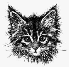 Portrait of cat — Stock Illustration Pencil Art Drawings, Animal Drawings, Black Cat Drawing, Cat Sketch, Illustration Sketches, Cat Tattoo, Cat Art, Vector Art, Graphic Art