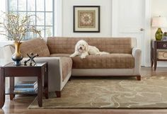 armless sectional sofa pet protector two tone set 3 2 by planet decor 21 best covers images couch slipcovers http www surefit net shop categories coverssectional sofascouchespet