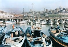 California - Fishing boats in a San Francisco Harbor with the city as a backdrop