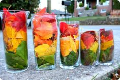 We Are Fully Falling For These Fall Leaf Centerpieces! From Rustic To Glowing, These Centerpieces Are Seriously Lovely And A Totally Fabulous DIY Project! Jamaican Party, Jamaican Wedding, Bob Marley, Curried Goat Recipe, Rasta Wedding, Rasta Party, Goat Recipes, Rasta Colors, African Theme