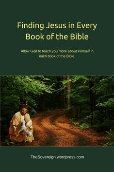 You could use this anonymous piece as a helpful outline to meditate on Jesus Christ Is In every book of the Bible.