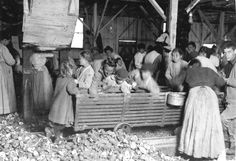 Lewis+Hine+-+All+are+oyster-shuckers+in+Barataria+Canning+Company,+Biloxi,+Mississippi,+1911.jpg (1600×1096)