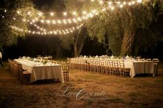 Italian wedding dinner under the olive trees in Puglia - planning LeccEventi