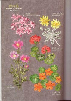 Gallery.ru / Фото #6 - Flower garden - simplehard
