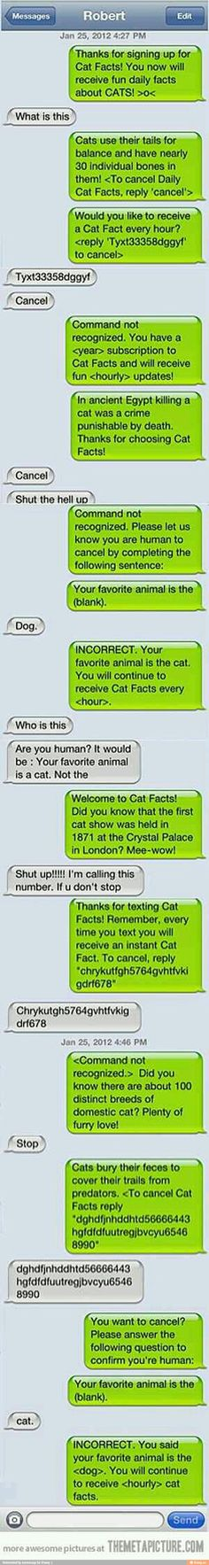 16 Funny Wrong Number Texts and Their Epic Responses. is Hilarious. The post 16 Funny Wrong Number Texts and Their Epic Responses. is Hilarious. appeared first on Gag Dad. Funny Pranks, Funny Texts, Funny Jokes, Funny Fails, Humor Texts, Fun Funny, Harmless Pranks, Funniest Pranks, Awkward Texts