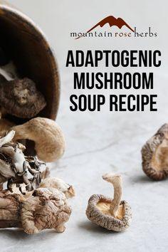 Tonic Mushroom Soup