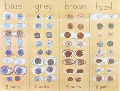 Eye LOVE this.(bad link...sorry, I TRIED to find it.) But this is do-able in the classroom as a way to explore eye color and graph it.