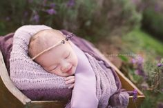 Sarah Martin Photography Lavender Newborn_0001