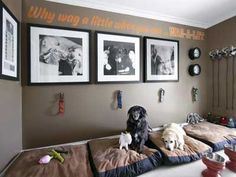 Turn a spare room into pet room! Contain their mess and fill the room with toys, beds, and food and water bowls