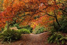 Svět v barvách podzimu