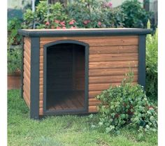 Simple outdoor pet house - just for you big loving, cheeky dog.