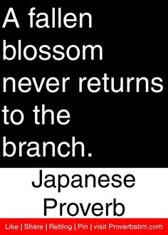 A fallen blossom never returns to the branch. - Japanese Proverb #proverbs #quotes